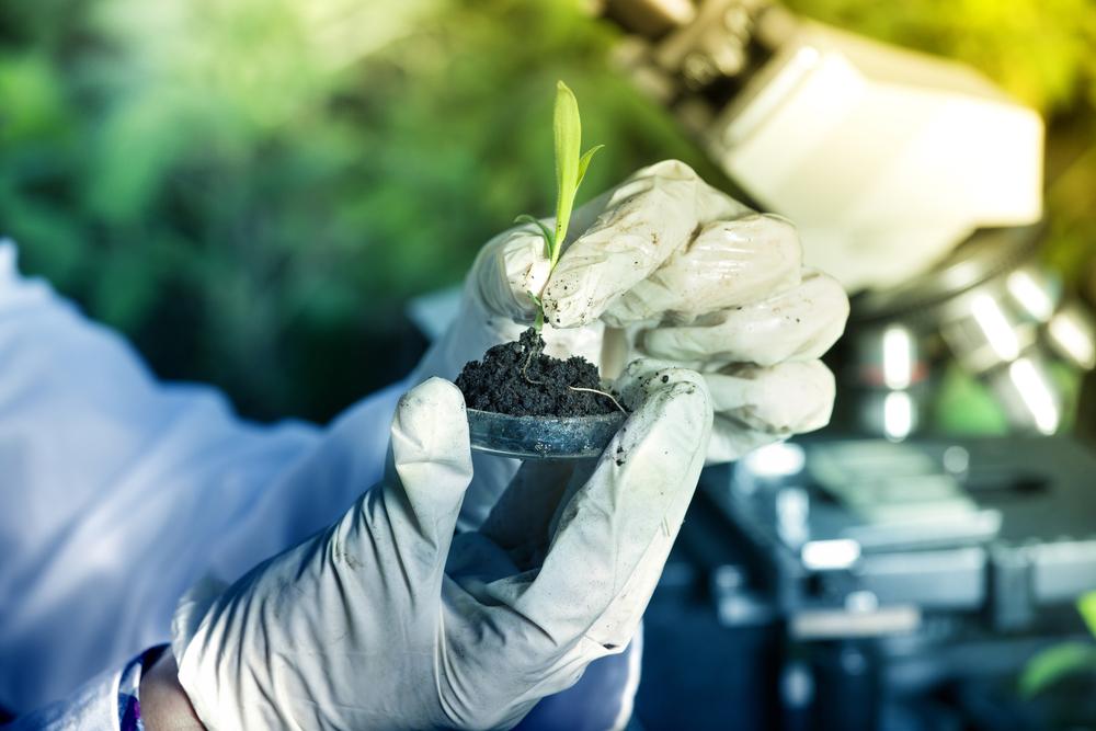 Ciencia para un mundo más sostenible